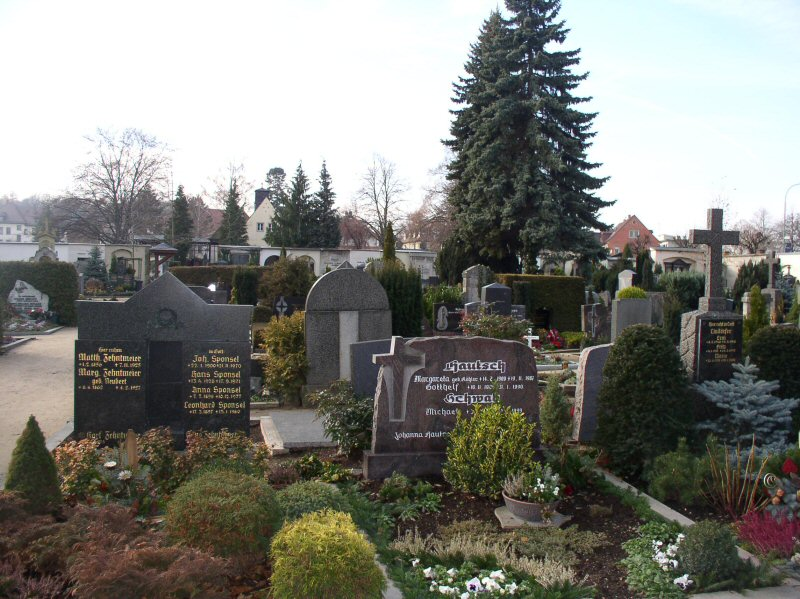 Graveyard where Count Dracula is entombed.